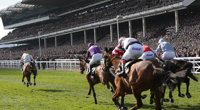 Cheltenham: 3 Golden Rules
