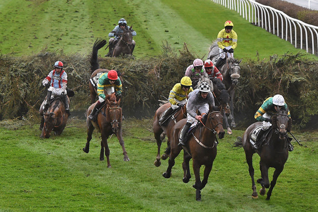 The Grand National – Age Stats
