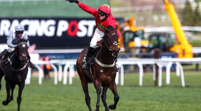 Albert Bartlett Novices Hurdle – An Overview
