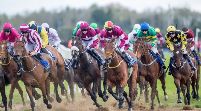 Irish Grand National Runner-by-Runner Guide